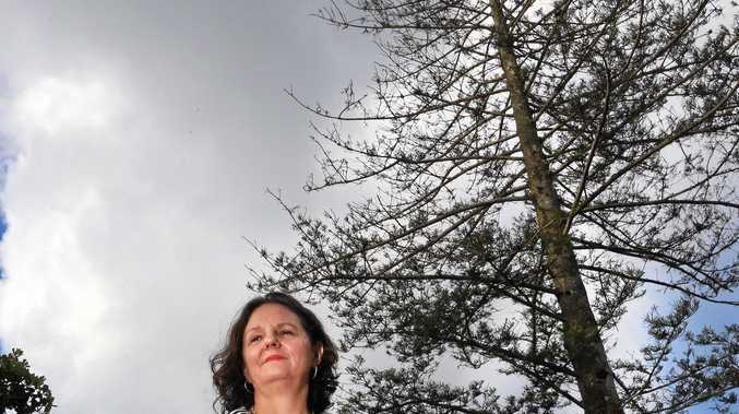 WORRIED: Cate Brown and other Banora Point residents raised the alarm over a 100-year-old Norfolk Island Pine which appears to be dying.