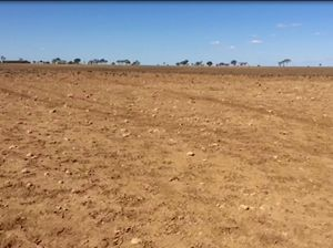 VIDEO: Drought biting the land like cancer