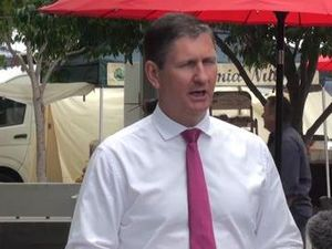 Springborg uses Miller to criticise new electorate laws