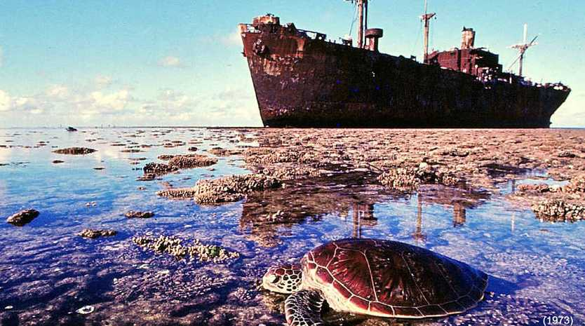 Low tide at Saumarez Reef in the Coral Sea – the wreck was too rusty to explore again.