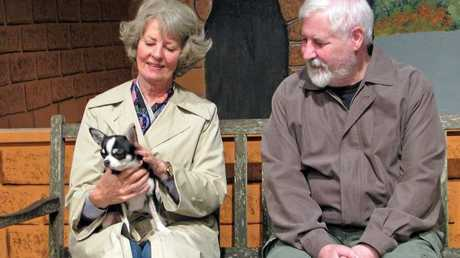 The Toowoomba Repertory Theatre Actors Ken Morrissey and Bev Irwin-Taylor cuddle up to Merv the Chihuahua who will have a cameo in Toowoomba Repertory's latest production The Last Romance.