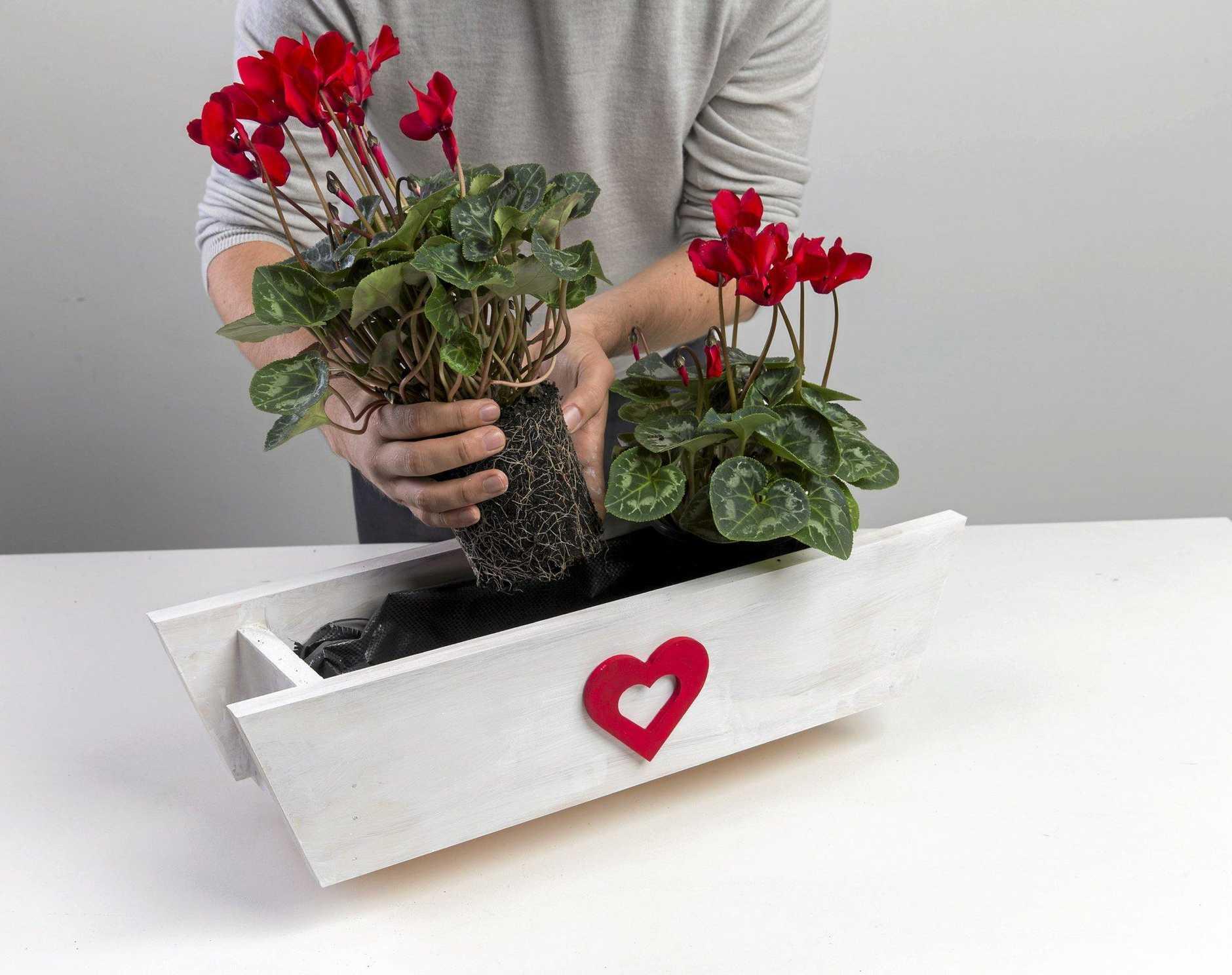How to build a planter box.