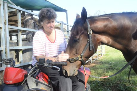 Southgate trainer Cathy Chapman and her foreman Mitchell Hayward with stable favourite Tee Lexus.Photo Bill North / Daily Examiner