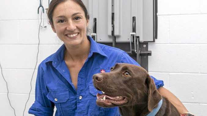 BEST FRIEND: Darling Downs Vets Oakey Clinic veterinarian Dr Adriana Sutton and Ellie the labrador.
