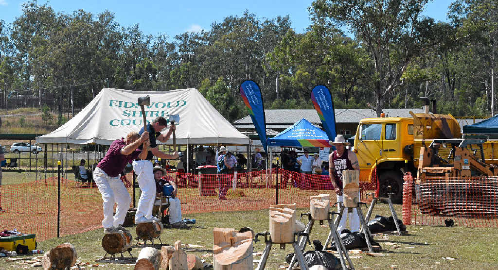 MAKING THE CUT: Woodchoppers at the Eidsvold Show last year.