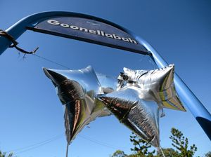 Goonellabah locals love their new art - or do they?