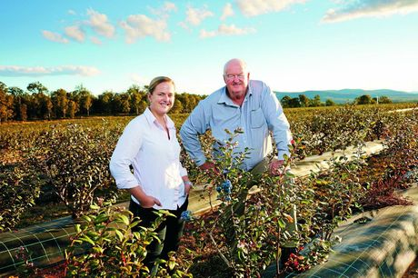 Mountain Blue's Natalie Bell and her father Ridley with Eureka blueberries ready to pick. Photo Contributed