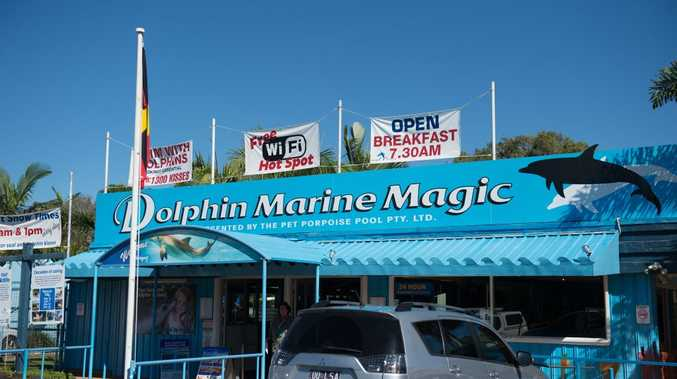 Dolphin Marine Magic, Coffs Harbour.. 05 MAY 2016.