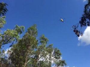 Helicopter flies over Mt Tibrogargan
