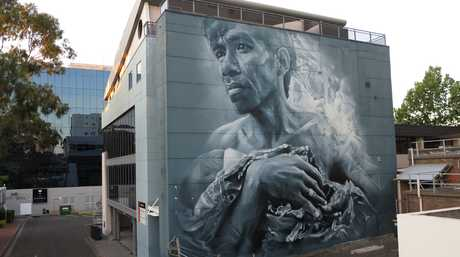 Artwork by Brisbane artist Guido van Helton.
