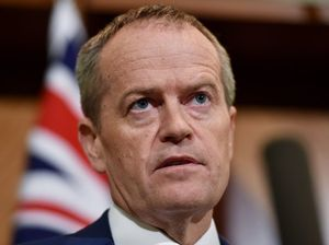 Labor in election-winning lead as Shorten's support grows