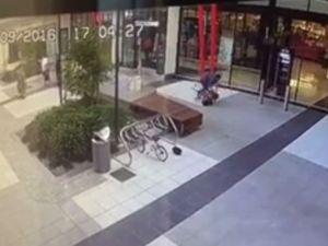 CCTV footage shows man hitting dog
