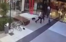 Shoppers forced to seperate dogs that attack