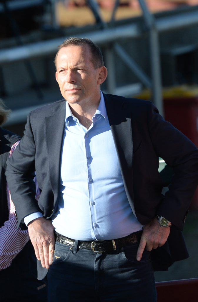 Tony Abbott is reportedly preparing to again push to lead the party