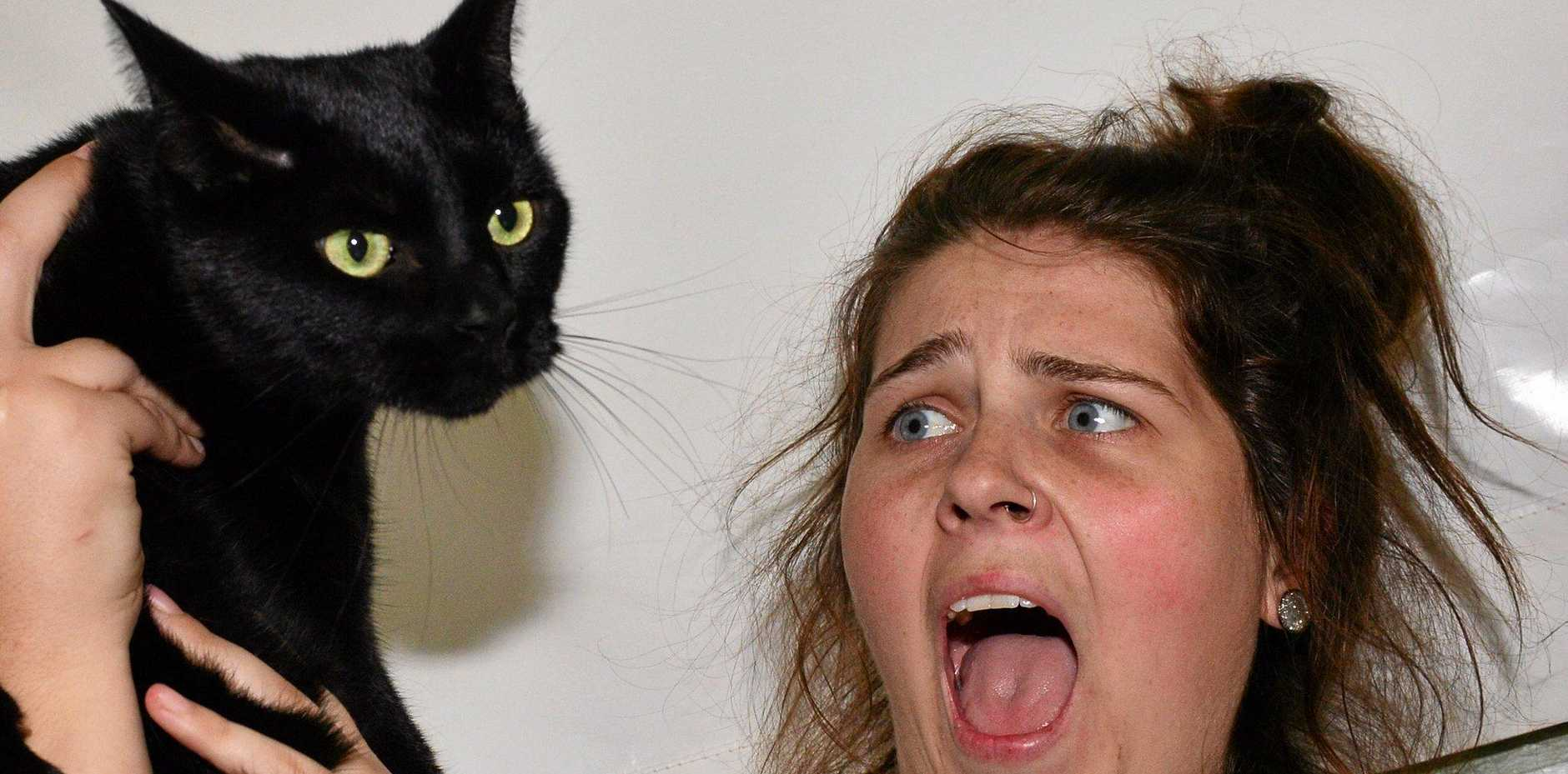 It's Friday the 13th and some people fear black cats. SCAR staff member Chané Venter with 'Black Jack'.