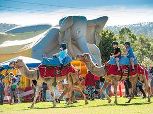 Countery charms and rural pursuits at Orara Valley Fair