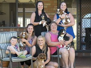 Furry friends hit the pavement for Million Paws Walk