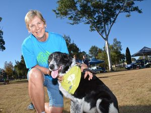 Pooches paw their way into hearts at Million Paws Walk