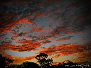 Photo of the Day: Sunset over Nimbin