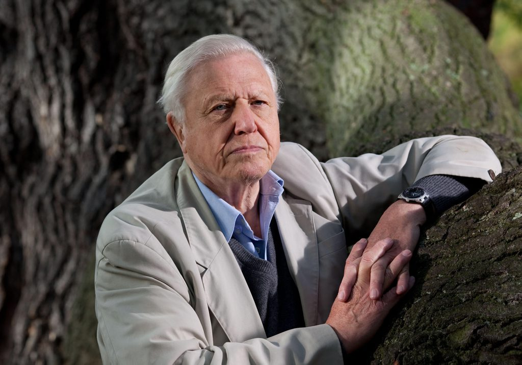 It's been announced that Sir David Attenborough is coming to Brisbane in February.