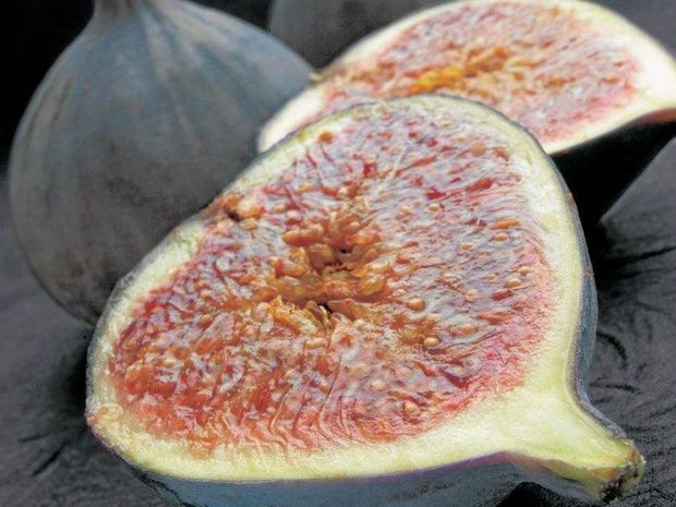 SEASONAL: Figs were first recorded as cultivated plants in southern Arabia in 2900 BC. Figs were either