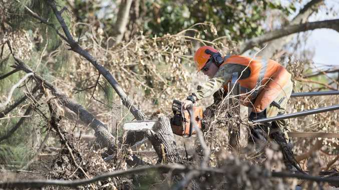 Australian Army Corporal Jaik Weston operating a chainsaw to clear and remove debris at the Kershaw Botanic Gardens as part of the Engineer Support Group. *** Local Caption *** Teams of chainsaw operators from the Australian Army s Engineer Support Group (ESG) are continuing to make major inroads as part of the clean up effort in the wake of Cyclone Marcia. On 3d March 2015, a section of troops from the 3rd Combat Engineer Regiment (3 CER) descended on Rockhampton s Kershaw Gardens, to clear access paths and remove a significant number of fallen trees. The ESG has surged to almost 200 soldiers so it can further assist State Emergency Service personnel, local contractors and members of the community restore Rockhampton, Yeppoon and Byfield regions.