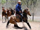 The Australian Stock Horse ambassador Guy McLean working his horses.