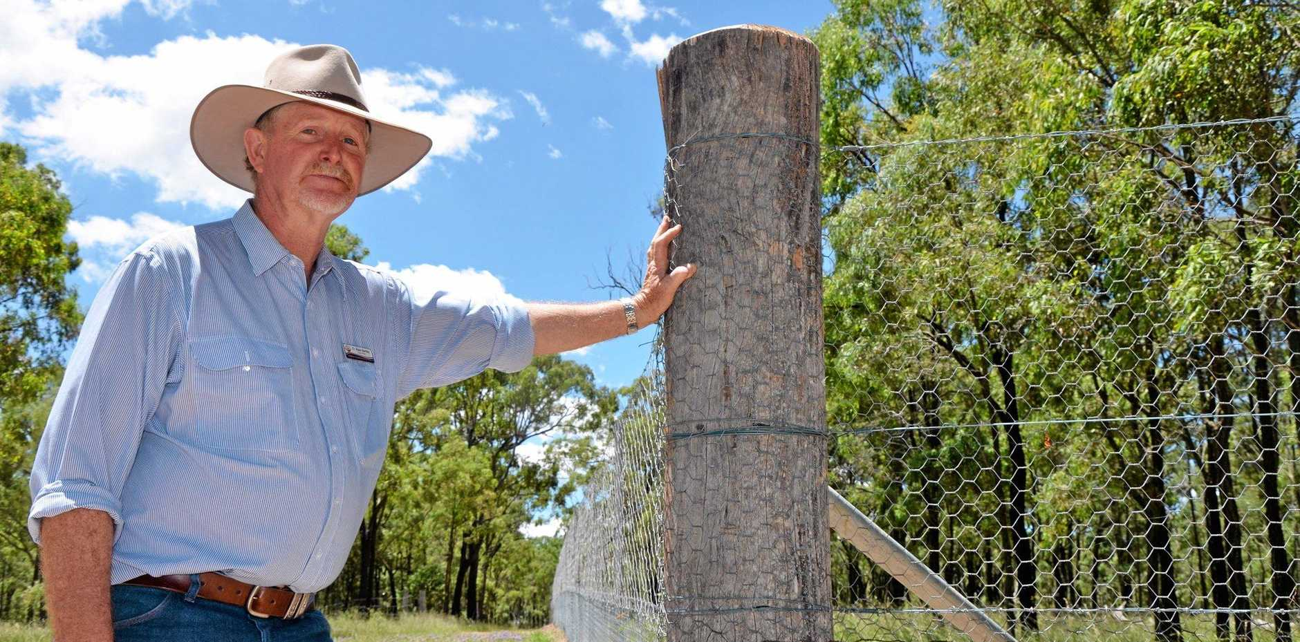 LONG LASTING: Darling Downs Moreton Rabbit Board chairman Ross Bartley hopes the release of a new virus strain will relieve pressure on the rabbit-proof fence.