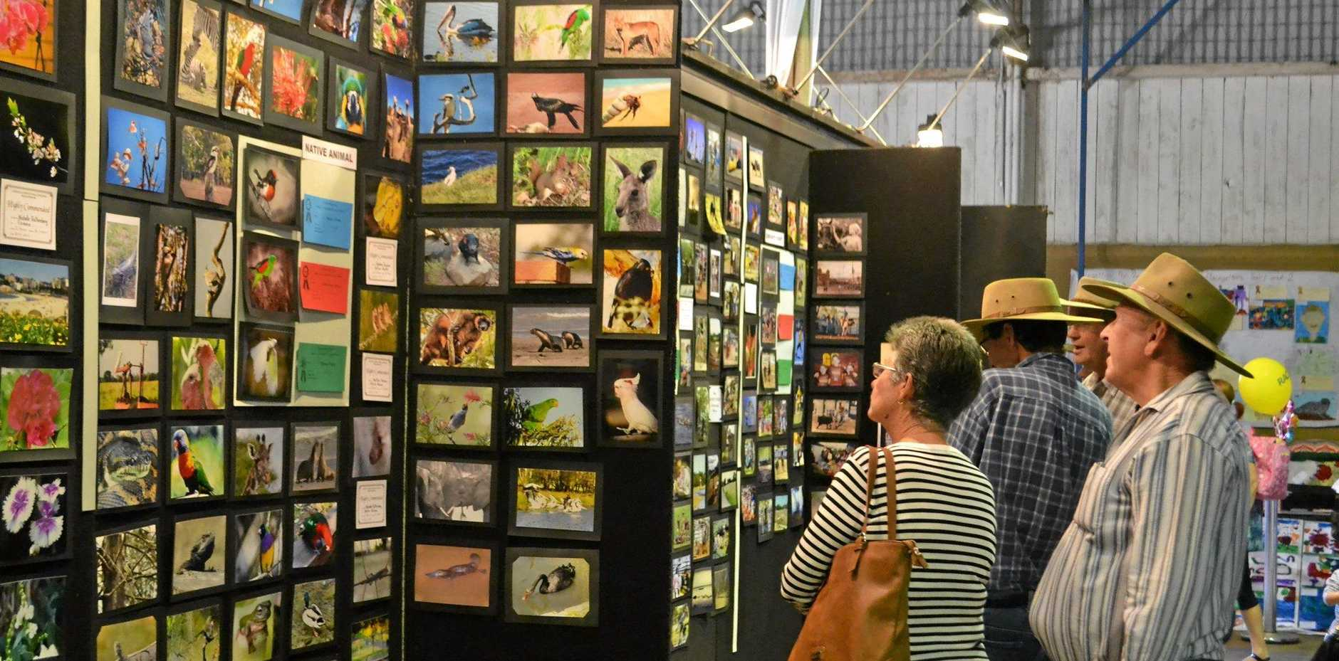 HAPPY SNAPS: Chinchilla Show patrons admire the photography.