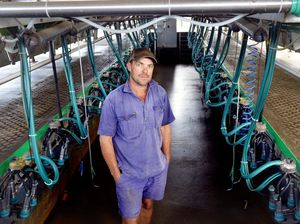 Ipswich wants to pay farmers more for milk