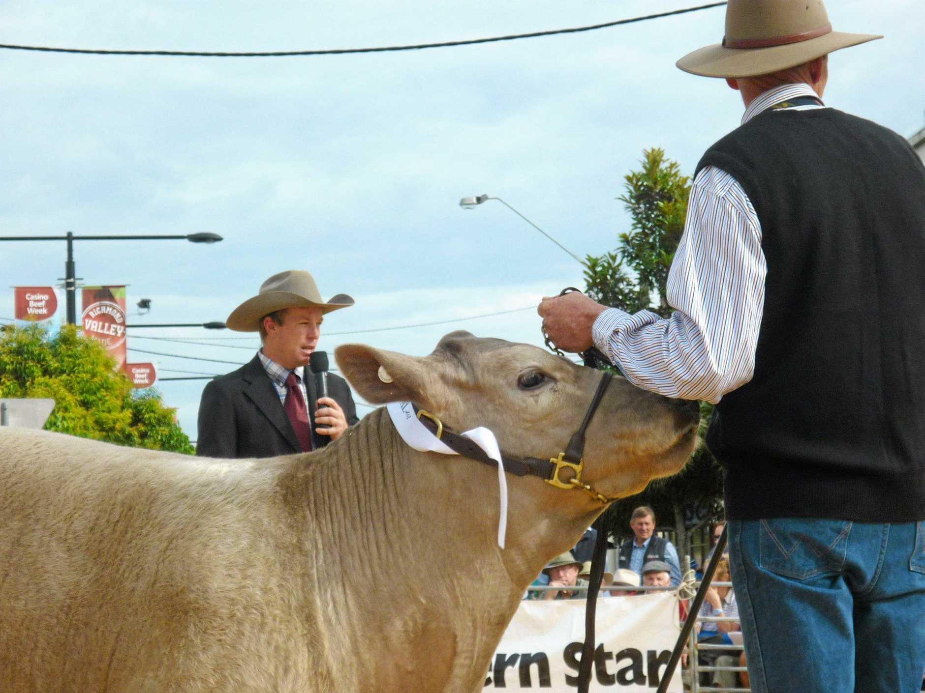 Beef judge Glen Waldron speaks to the crowd at Casino during Beef week. Photo Jamie Brown / Northern Star