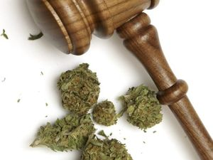 Teen faces Supreme Court after swapping weed for an Xbox