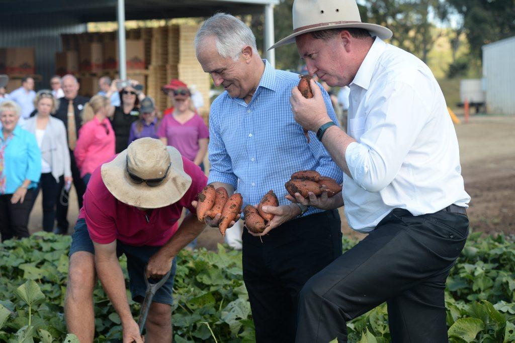 Prime Minister Malcolm Turnbull visits Rockhampton. Photo Allan Reinikka / The Morning Bulletin