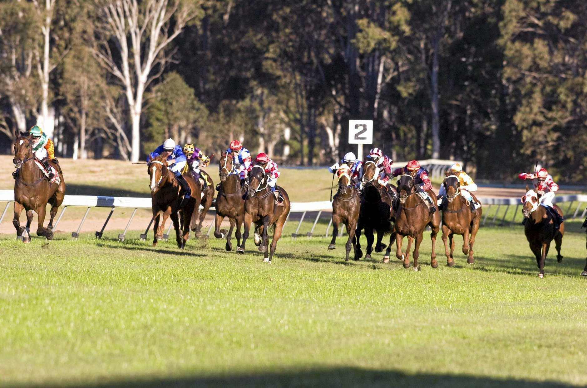 The Beef Week Cup is one of the biggest races on the Casino Racing Club calendar.