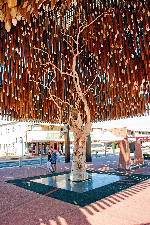 Barcaldine's Tree of Knowledge.