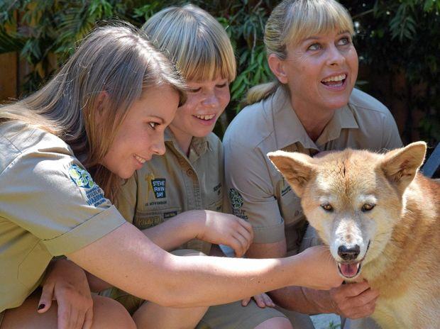 Bindi, Robert and Terri Irwin taking time out with a dingo.