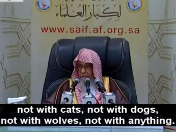 Sheikh Saleh Bin Fawzan Al-Fazwan says people should not take photos with cats, dogs, wolves... or at all