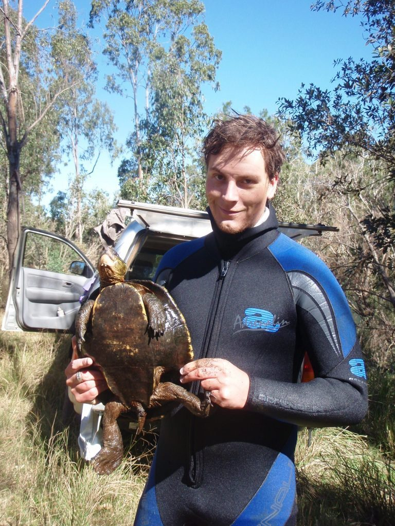 James Cook University researcher Jason Schaffer is calling for greater protection of the white-throated snapping turtle (Elseya albagula).