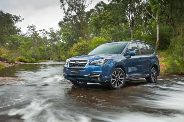NEW STYLE: Latest Forester receives fresher styling both inside and out, and remains typically family-friendly on- and off-road.