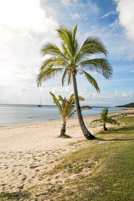 Relax on the white sand of Tangalooma Island Resort.