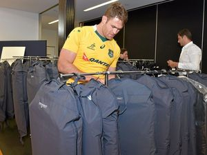Wallabies suit up on Sunshine Coast