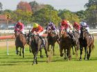 Intrepic - ridden by Matt McGuren wins Race 3 at Grafton Races.