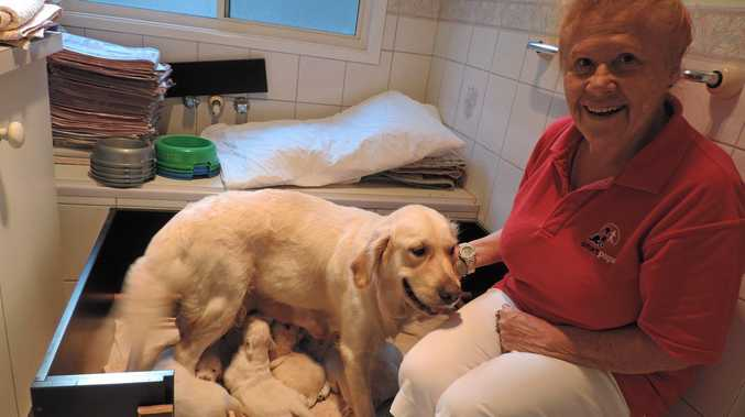 CHANGING LIVES: Smart Pups' Robi O'Keeffe with Daisy and her eight puppies ready to be trained.