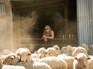 Vicki Ward found her dream job in a woolshed
