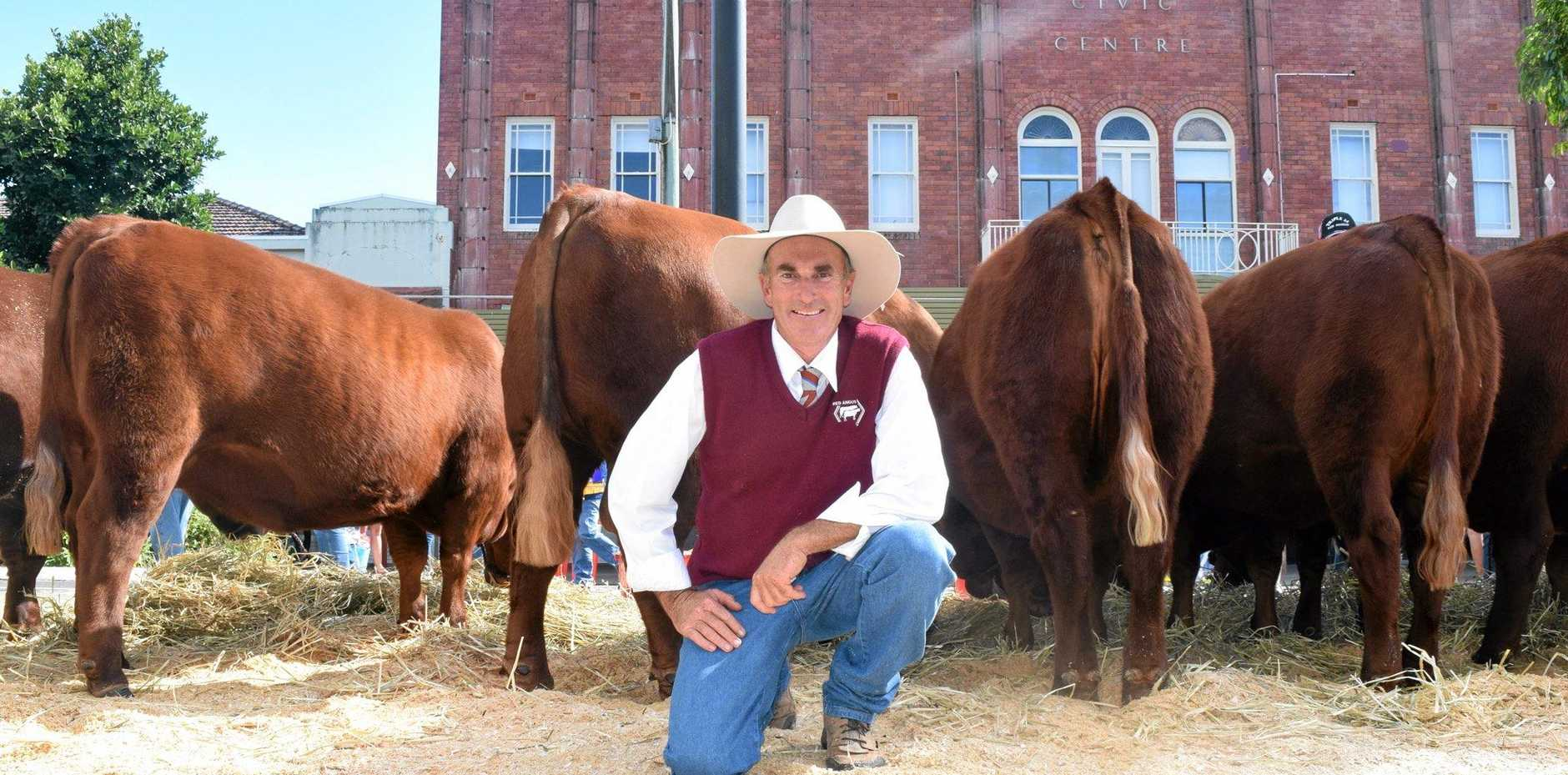 Craig Gapes of the Triple M Red Angus stud at Rukenvale, north of Kyogle, in front of with his nine entrants into the Beef Week cattle show on Saturday. Mr Gapes' 20-month year-old bull Knockout took the top gong.