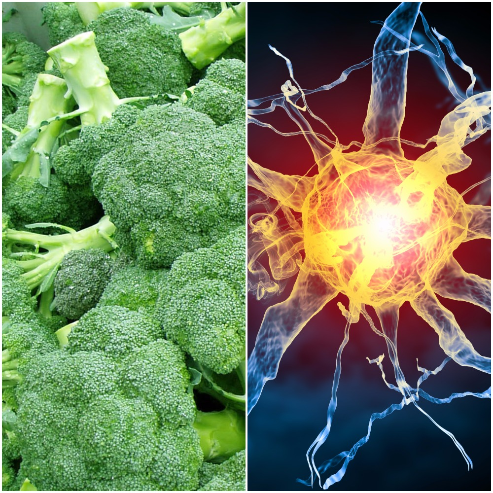 Biomedicine and broccoli are bringing two government ministers to Toowoomba today.