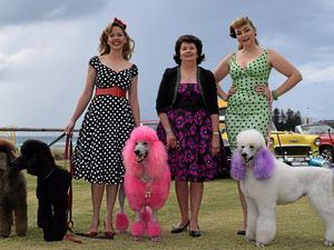 Pooches get their claws out for Oodle pageant