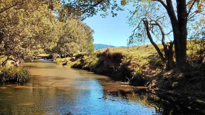 FUNDS BOOST: The health of the Rous River will be improved through a NSW Environmental Trust grant, matched by funding from Tweed Shire Council.
