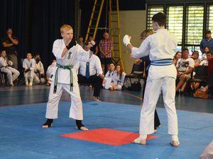 Kids 'karate chop' their way through tournament