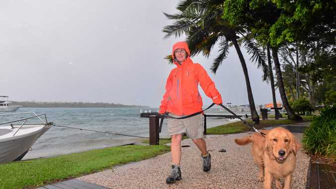 Sunshine Coast on alert for wet and windy weather which has already caused flight delays. Greta Derrick walking with Bentley on Noosa River. Photo: John McCutcheon / Sunshine Coast Daily